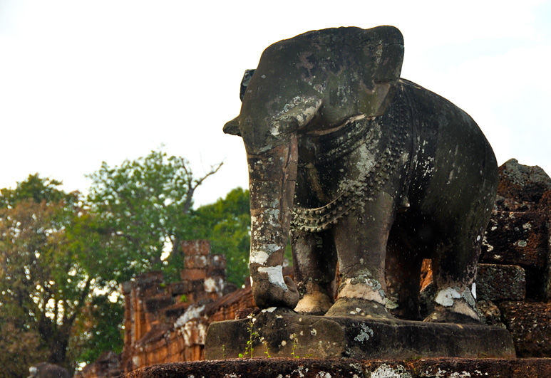 elephant statue at east mebon. december 2011.